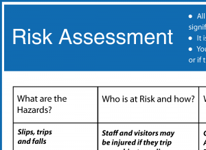 esky-riskassessment